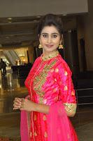 Shamili in Pink Anarkali Dress 19.JPG