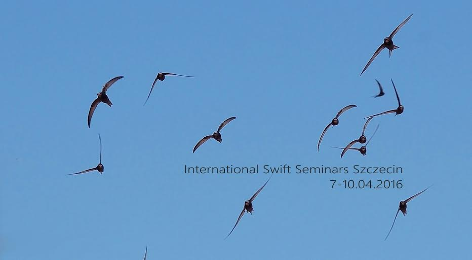 Szczecin International Swift Seminars - April 6th-9th 2016
