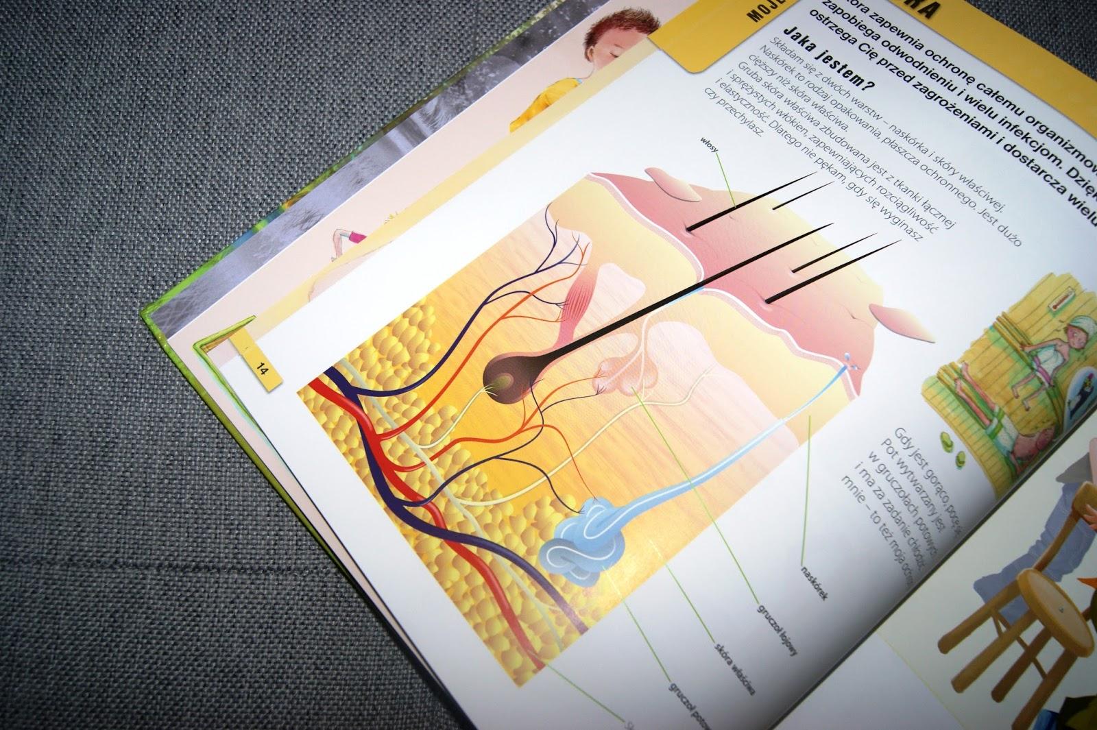 Ilustrowana encyklopedia dla dzieci