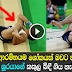 French gymnast breaks his leg in horrific snap At Rio Olympics - Watch Video