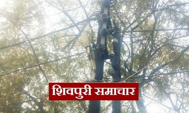 सेसई सडक़: बिजली नहीं आने से ग्रामीण परेशान, शिकायतों के बाद भी नहीं हो रही सुनवाई | kolaras News