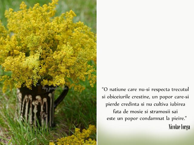 citat Nicolae Iorga despre popor natiune buchet in cana cu sinziene