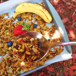 gluten free and vegan berry coconut granola recipe