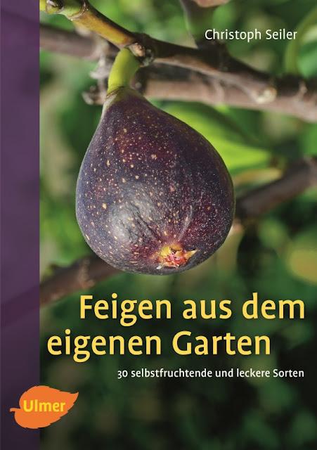 Gartenblog Topfgartenwelt Buchvorstellung Buchrezension: Feigen aus dem eigenen Garten, erschienen im Ulmer-Verlag