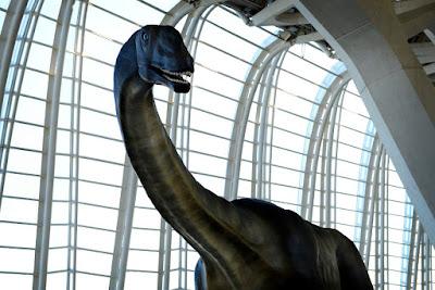 Talleres 'Pasaporte al Espacio', #NavidadenCAC, planetario 'Las Nocturnas de invierno' y conocer al Losillasaurus giganteus, propuestas de ocio en la Ciutat de les Arts i les Ciències