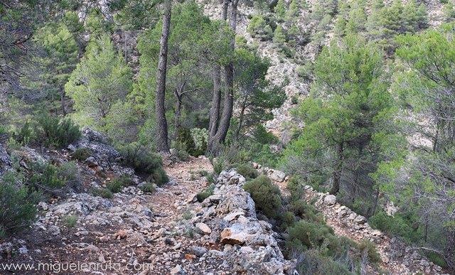 Descenso-ruta-Padrastro-Bogarra