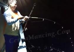 Double Strike Ikan Tuna Doggy Mantap