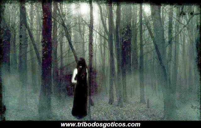 solidão,sozinha,floresta,escura,preto