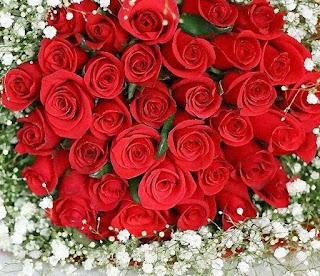 Ramo de rosas rojas y flores blancas pequeñas