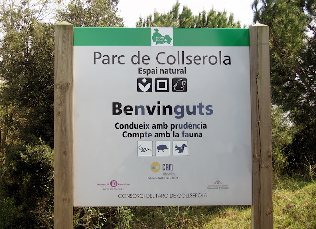 Parc de Collserola em Barcelona