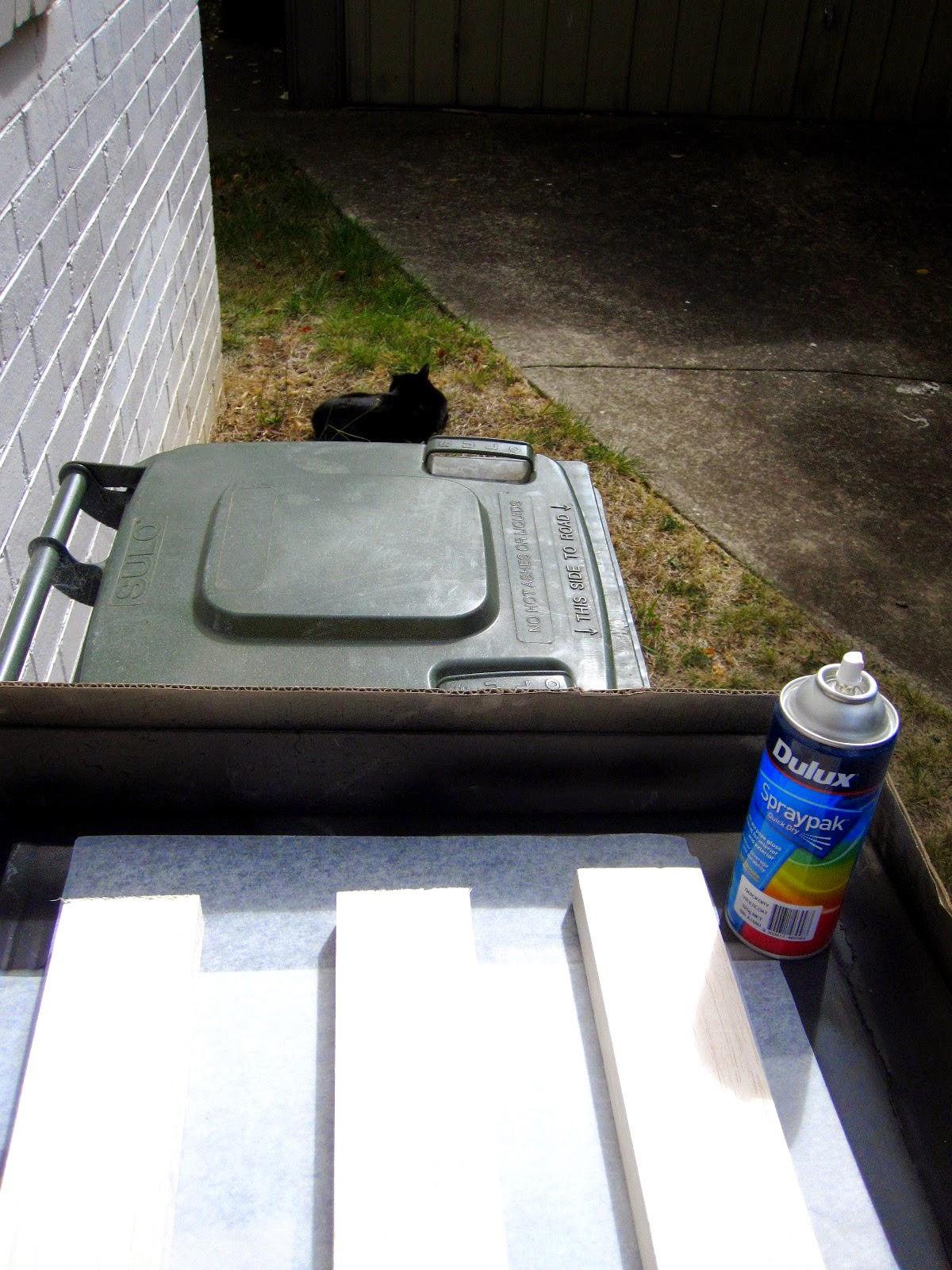 Can of spray paint and three lengths of balsa wood on top of a recycling bin outside a brick house.