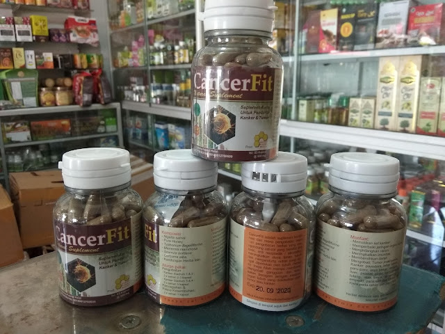 agen Obat herbal Kanker Alami Cancerfit area padang sumatera barat