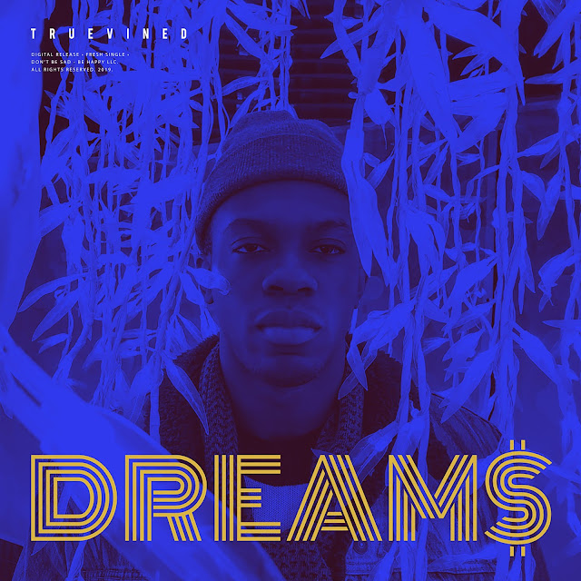 "Truevined - Dream$ - Album artwork - Picture of Truevined's face and Song title ""Dream$"""