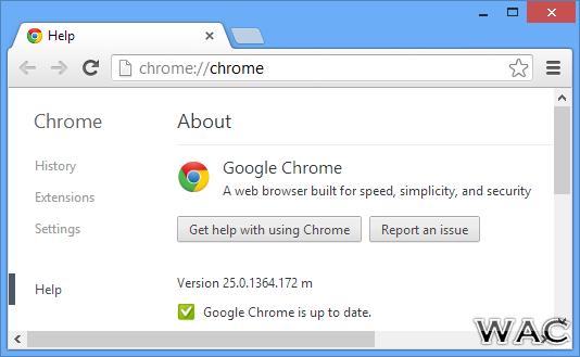 GOOGLE CHROME 25.0