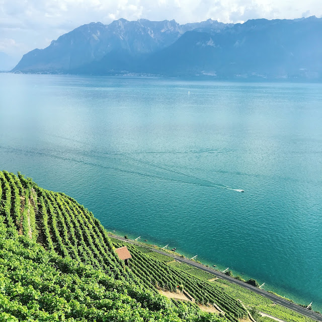 Hiking in Lavaux, the wine terraces of Switzerland