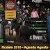 Rodeio 2018 - Agenda Agosto - Todos os Rodeios !
