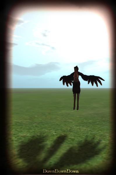 Harpy AO(DownDownDown)