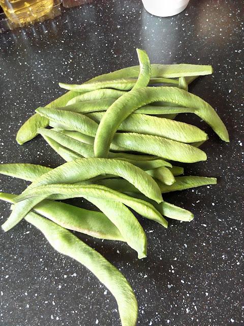 超级好种的Runner Beans东北豆角
