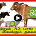 What is the difference A1 Versus A2 Milk? Explained in Tamil | TAMIL NEWS