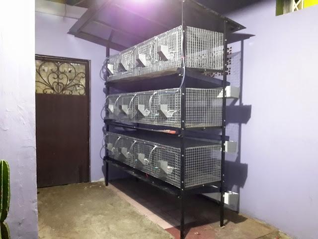 Kandang Galvanis Untuk Kelinci Holland Lop murah 3 tingkat