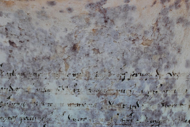 Mystery of peculiar purple spots on 800 year old scrolls solved
