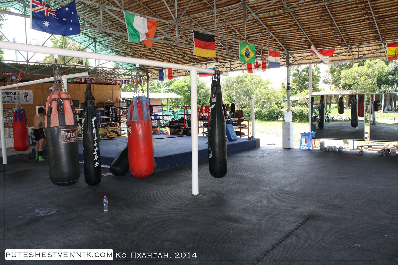 Мешки и ринг в клубе тайского бокса