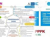 Sudah Deal, Tidak Semua Pemerintah Daerah Ikut Buka Pendaftaran PPPK