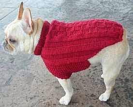 manteau pour chien a tricoter soi meme