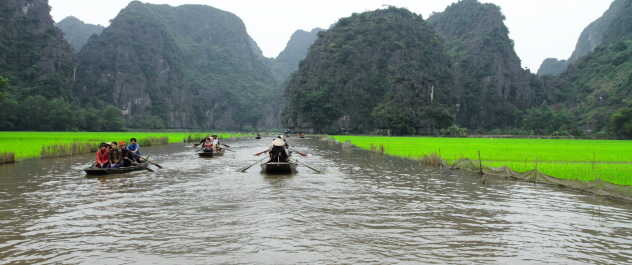 Tam Coc river flanked by paddy fields on either side, Ninh Binh, Vietnam