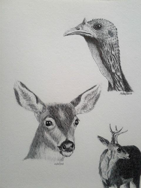 Ballpoint pen nature journal, turkeys and deer