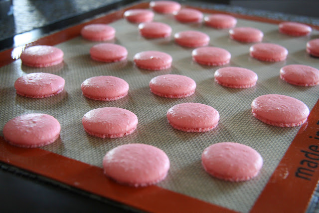 Finished macarons baked at 260F in a regular oven for 20 minutes using the italian meringue method.