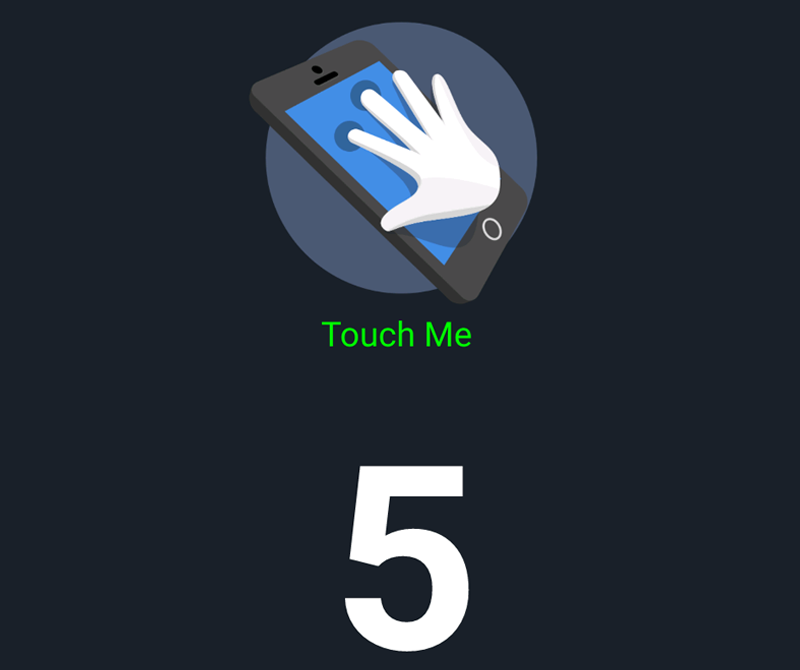 5 point touch screen
