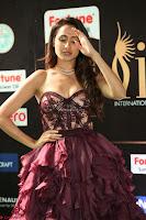 Pragya Jaiswal Sizzles in a Shantanu Nikhil Designed Gown  Exclusive 069.JPG