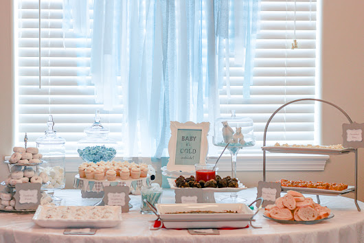 Polar Bear Themed Baby Shower