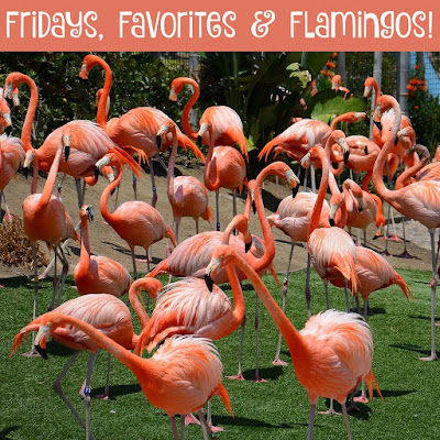 While I'm Waiting...Fridays, Favorites & Flamingos!