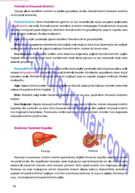 7. Sınıf Fen Bilimleri Mevsim Yayınları Ders Kitabı Cevapları Sayfa 18