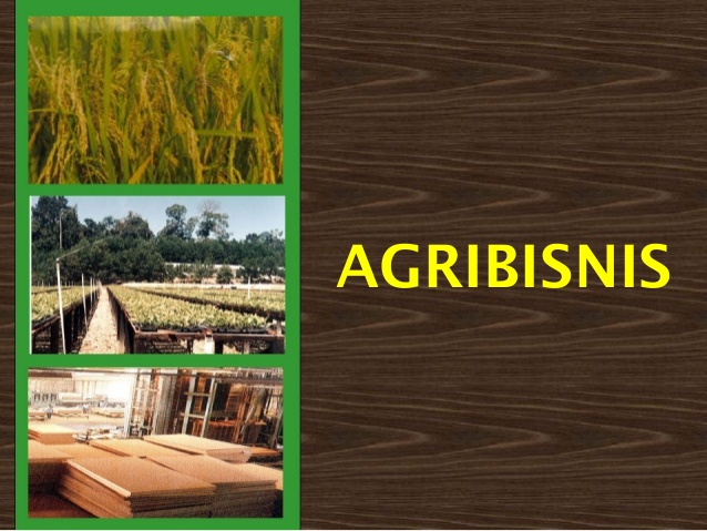 Fokus dengan agribisnis