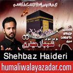 http://www.humaliwalayazadar.com/2017/10/shehbaz-haideri-nohay-2018.html