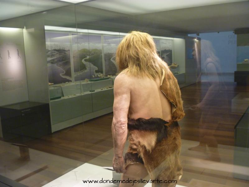 Donde me dejes llevarte: Museo Arqueológico de Asturias (Oviedo)