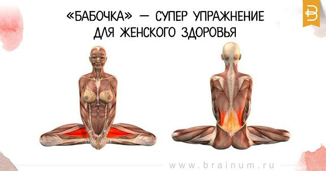 Улучшает кровоснабжение органов малого таза.