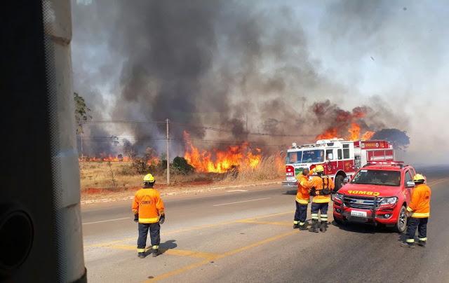 Fogo queima 220 hectares de mata entre duas rodovias no DF, segundo bombeiros