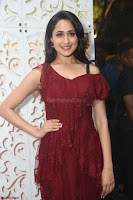 Pragya Jaiswal in Stunnign Deep neck Designer Maroon Dress at Nakshatram music launch ~ CelebesNext Celebrities Galleries 076.JPG