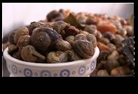 Como hacer caracoles en salsa, receta tradicional