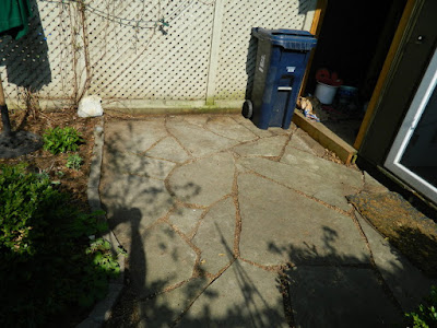 Cabbagetown Toronto Spring Backyard Garden Cleanup After by Paul Jung Gardening Services a Toronto Gardening Company