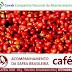 Produtividade de café no estado da Bahia atinge 35 sacas por hectare
