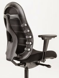 Ergonomic Chair Back