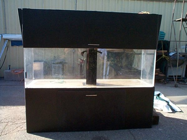 Giant aquariums for 300 gallon fish tank