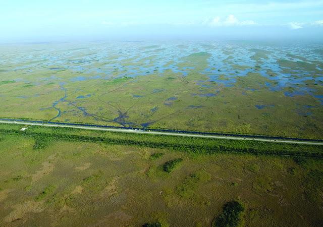 Everglades pela Tamiami Trail (Hwy 41) em Miami