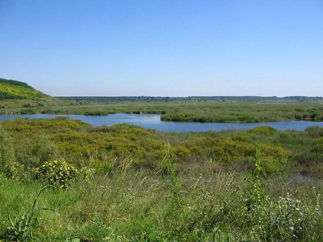 Reserva natural de Srebarna Bulgaria