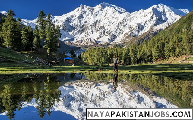 Fairy Meadows - Heaven on Earth , Places to visit in Pakistan, best places in Pakistan to Visit